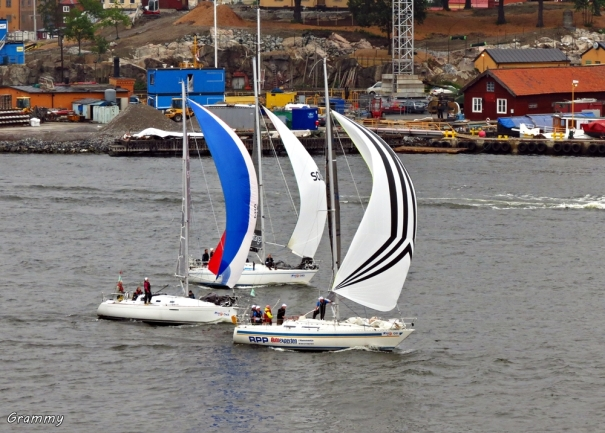Baltic Cruise 879 (2)