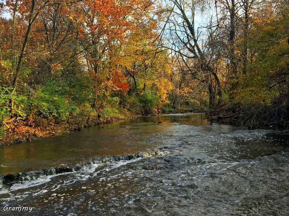 Autumn on Little Mill Creek Lenexa (2)